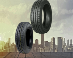 Why these two types of rubber are distinct products and what influences their prices over time.